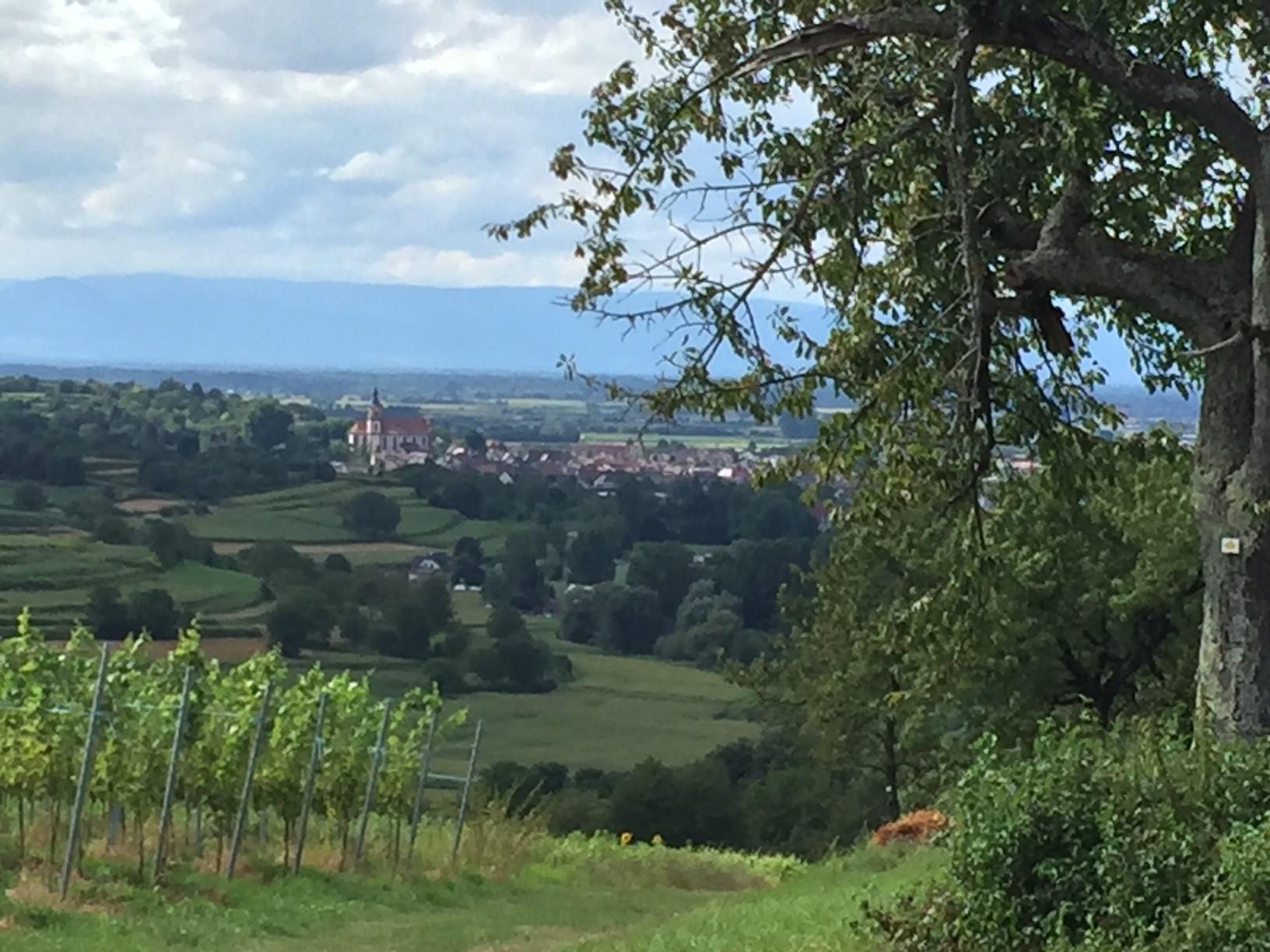 Stadt Ettenheim, Wasserversorgungsbetrieb